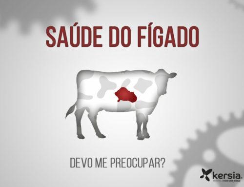 Você está cuidando do fígado das suas vacas?